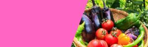 カラダづくりに欠かせない3大栄養素の代謝について